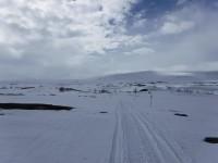 Längs snöskoterspår.