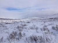 På väg genom en snötäckt fjällvärld.