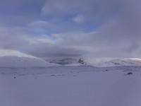 Vita berg.