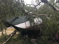 I Fröskog har ett träd fallit på en båt som står på land.
