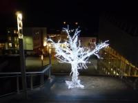 En trevlig sak med att resa i december är att det är julpyntat och fint på många ställen, som detta upplysta träd i Molde.