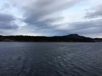 Kring Bergen är landskapet mera skogsbeklätt än på många ställen i Nordnorge.