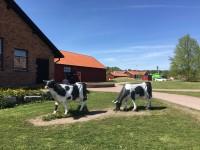 Kor utanför Åbergs museum i Bålsta.