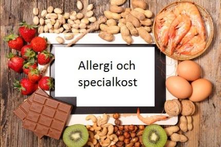 Webbaserad utbildning i allergi och specialkost