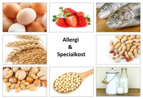 Online utbildning i allergi och specialkost kr. 995:- - Online utbildning i allergi och specialkost