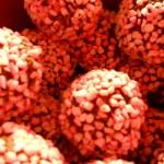Juliga chokladbollar