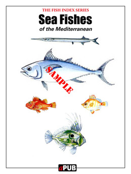 Sea fishes Mediterranean