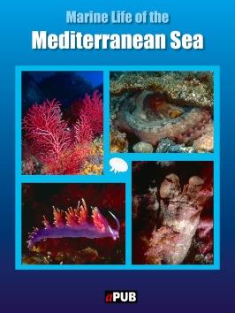 Marine life of the Mediterranean