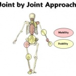 joint-by-joint