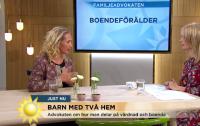 PappaBarn - TV4, nytt lagförslag om samarbetssamtal
