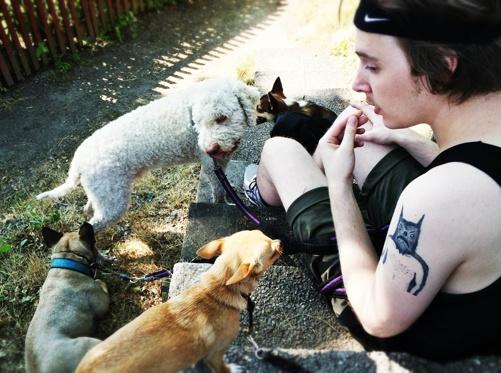 Praktikanten Johan med varma hundar