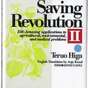 An Earthsaving Revolution DEL 2, Teruo Higa