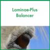ForagePlus Laminae-Plus Balancer, 5 kg