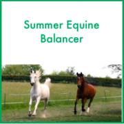 Forageplus Summer Equine Balancer, 5 kg
