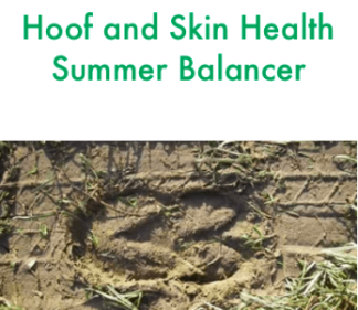 Forageplus Hoof & Skin Health Summer Balancer, 5 kg -