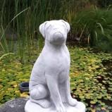 Trädgårdskonst Boxer