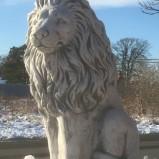 Staty Lejon