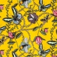 Bugs & Butterflies - Bugs & Butterflies gul
