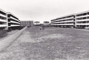 Hallands-Bild Foto: Börje Försäter. Baksidan mellan hus B och C 1970-tal.