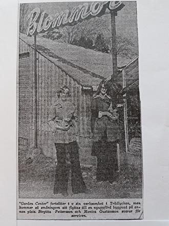 Tidningsartikel ur Hallands Nyheter 7/4-1975. Garden Center på Trädlyckan. På bilden syns Birgitta Pettersson och Monica Gustavsson.