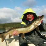 Fiske drogen (2)