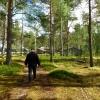 09. Myckelgensjö foto Ing-Marie Wallin