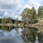 Orrholmaön foto Monica Andersson
