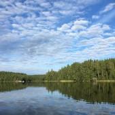 foto Monica Andersson