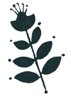 potters tissue-black