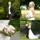 Brudpar i Falkenberg