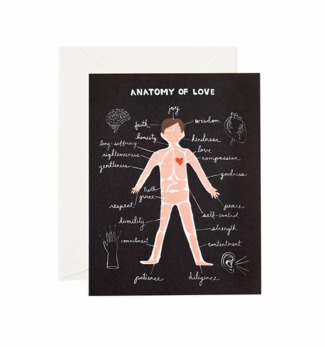 Anatomy of love - Kort