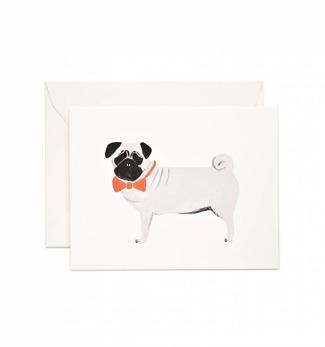 Pug - Kort