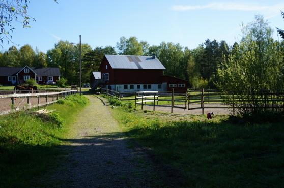 Stallet med paddock på vänster sida och rundcorall på höger sida.