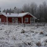 Ambjörns Lycka i vinterskrud