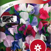 Luktärt, Bijou mix