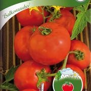 Tomat, Busk-