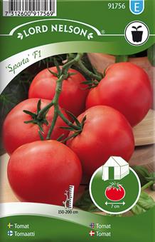 Tomat, Växthus-
