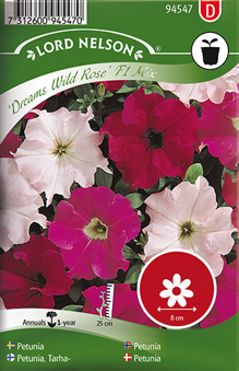Petunia ''Dreams Wild Rose'' F1 Mix