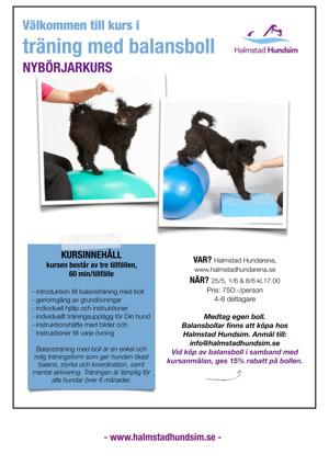 kurs i träning med balansboll