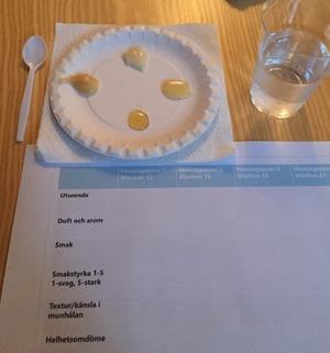 Honungsprovning på SSNs medlemsdag 2015