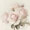 Utförsäljning! Servettpaket sagen - Vintager roses