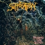 SUFFOCATION - Pierced From Within LP - Purple vinyl