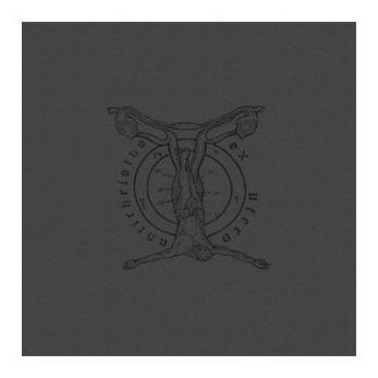 WITCHMASTER - Antichristus Ex Utero - CD - CD jewelcase