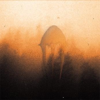SEMILANCEATA – Dødhelighaz Digipak CD - Digipack CD