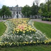 Rådhusparken Göran Johannesson