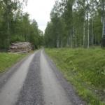 Stickvägar