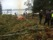 Sjöbackabadet - städdag 2015 liten