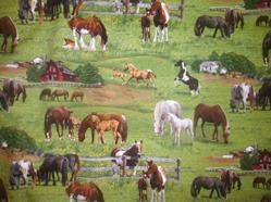 Tyg hästbete FQ 45:-/st alt 139:-/meter