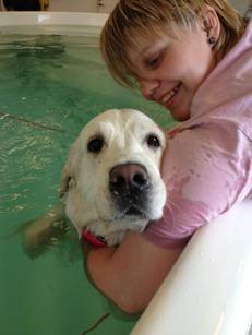 rehab, hundsim, hundmassge, stretching