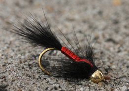 Black and Red Copper Nymph